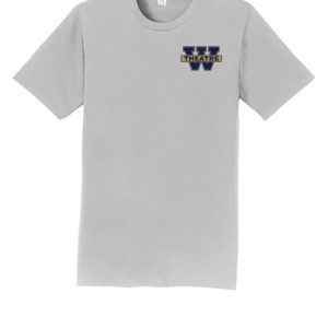 Tshirt-Silver-Front